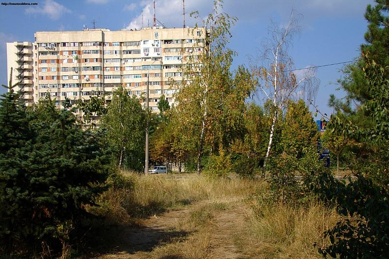 Погода в селе михайловском алтайский край